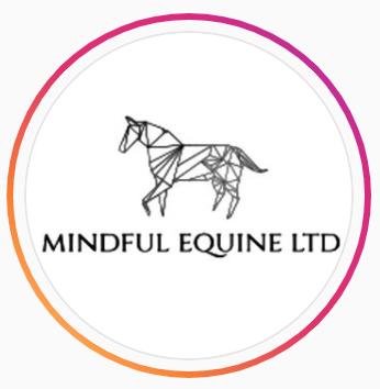Mindful Equine